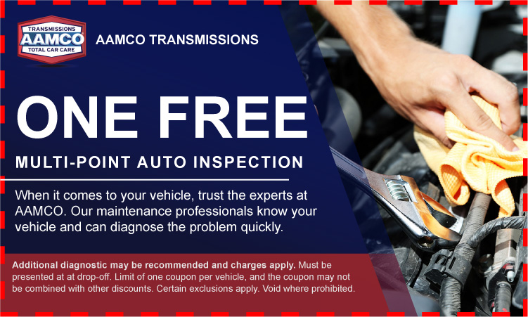 Free Multi-Point Inspection Coupon